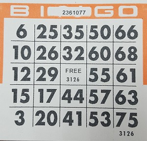 4x4 BINGO - Single Pack (250 Cards)  See our newest designs with more colors!