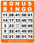 3x4 BONUS BINGO - Single Pack (100 Color Cards)