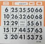 4x4 BINGO - Single Pack (250 Cards)
