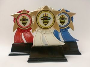 6 inch - Shooting Star Trophy